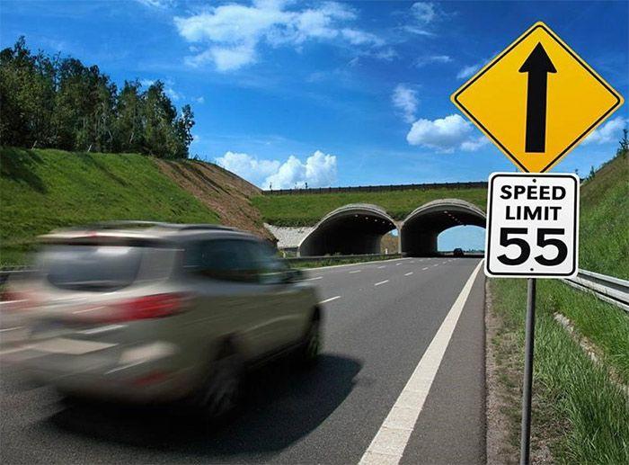 como verificar las multas de tránsito