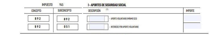 formulario 575 rt empleada domestica