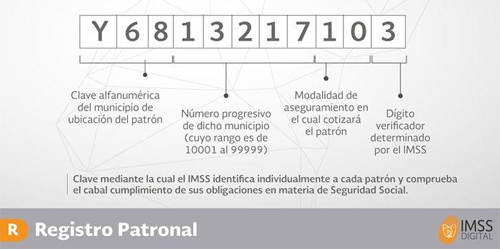consultar registro patronal