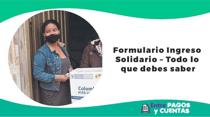 Ingreso Solidario Formulario